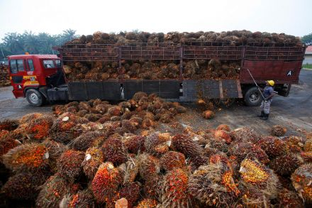 Malaysia biodiesel plan faces squeeze from low crude oil