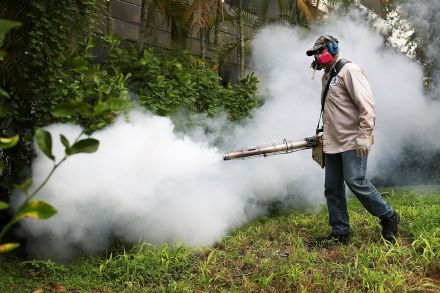 39626401 - 25_08_2016 - US-MIAMI-BEACH-SPRAYS-TO-COMBAT-ZIKA-VIRUS-CARRYING-MOSQUITOES.jpg