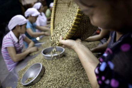 33577953 - 09_01_2015 - VIETNAM COFFEE.jpg