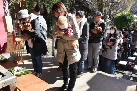13_41207870 - 19_01_2017 - JAPAN-ANIMAL-SOCIETY-RELIGION.jpg