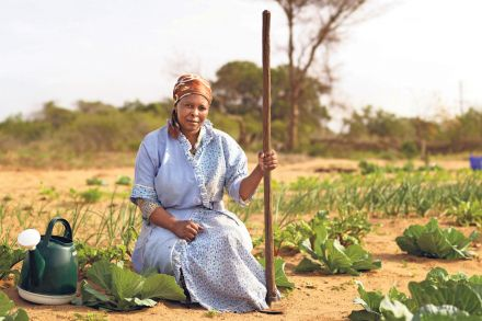 Africa_foundation_assisting_with_community_gardens.jpg