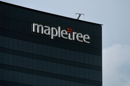nz_mapletree_170954.jpg