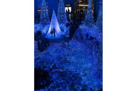The dramatic festive lights at Caretta Shiodome.jpg