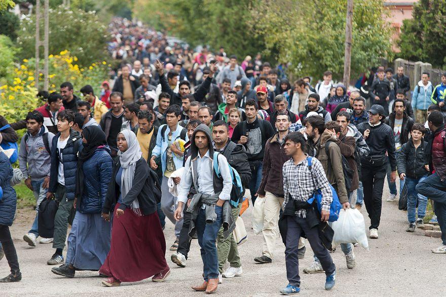 Новости о мигрантах в ростове