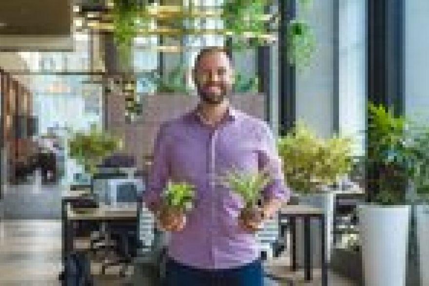 Coworking, market entry startup Greenhouse raises S$3.8m in bridge financing